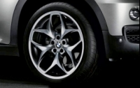 Double Spoke 215 Grey R21